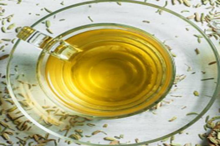 fennel water morning drink